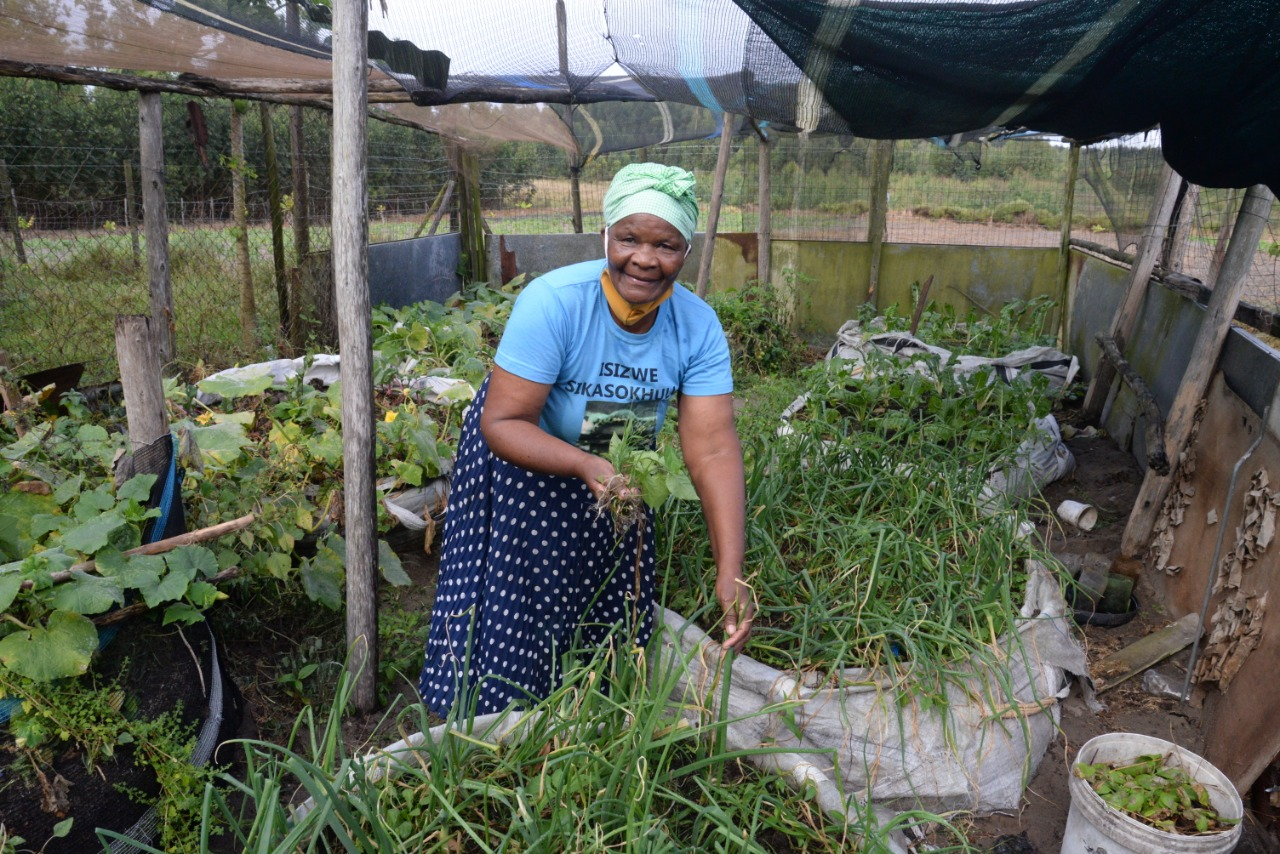 Norha Ngcobo in one of her vegetable gardens