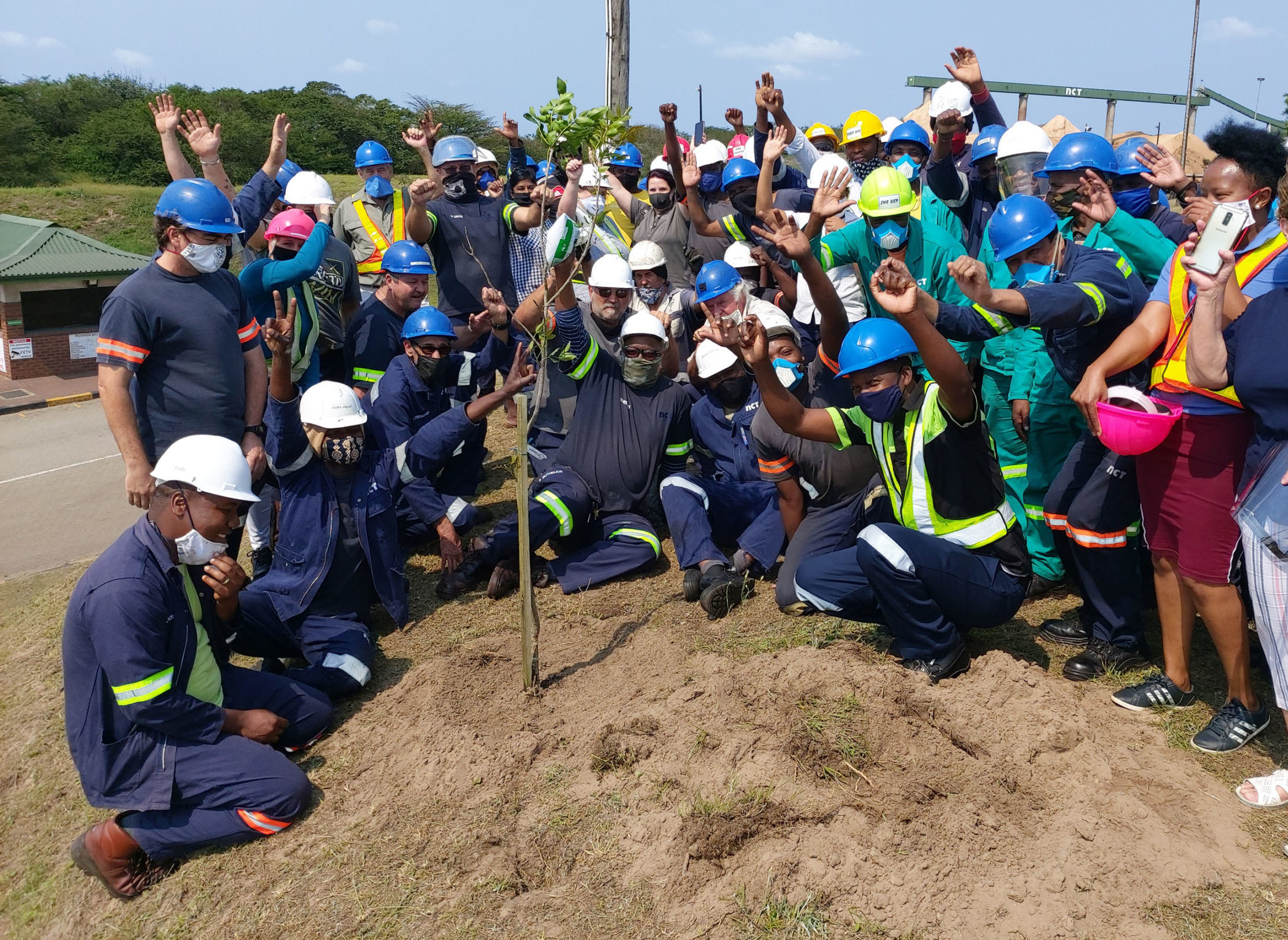 NCT Richards Bay Wood Chips