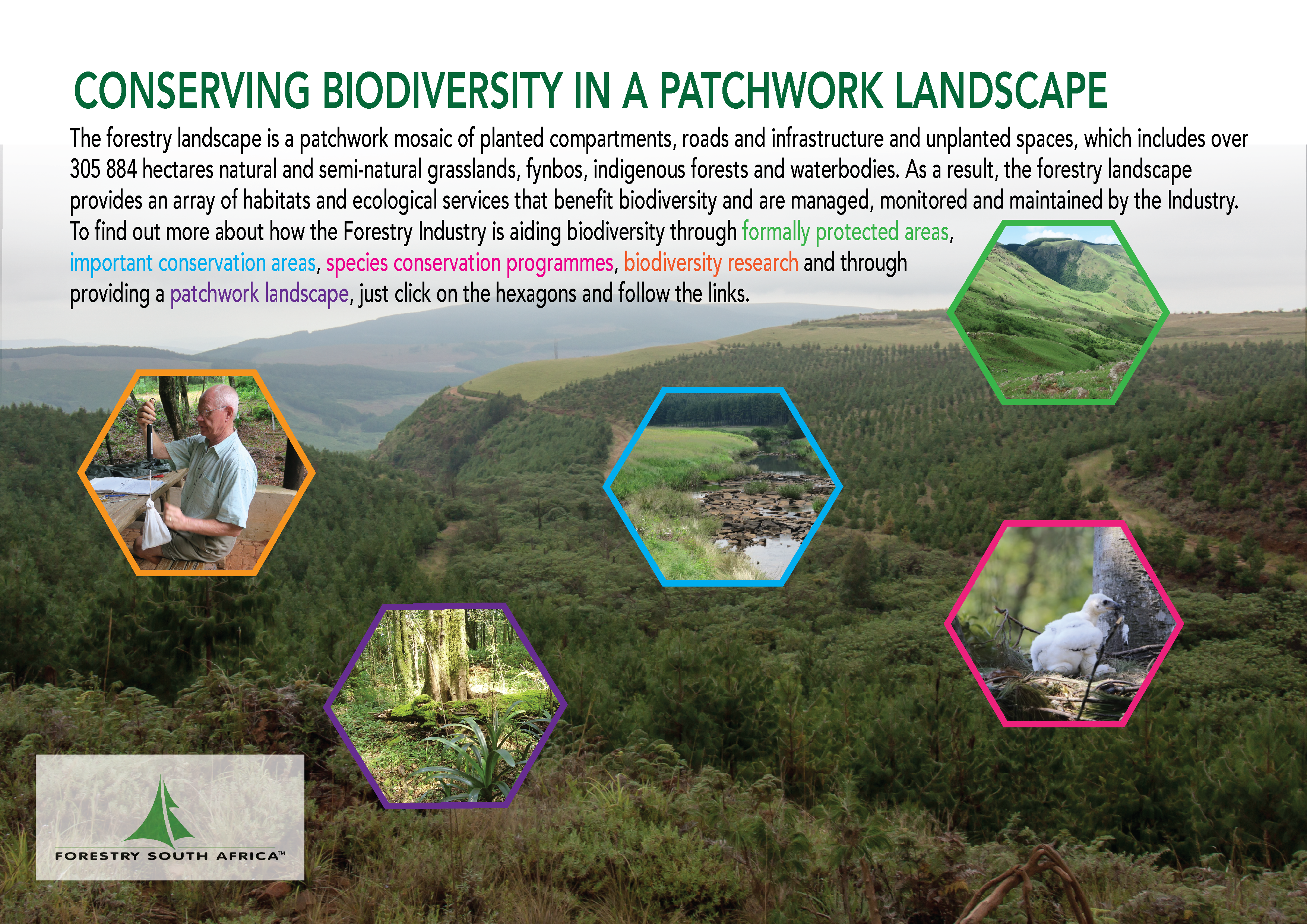 FSA Infographic - Conserving Biodiversity in a Patchwork Landscape-01 (1)